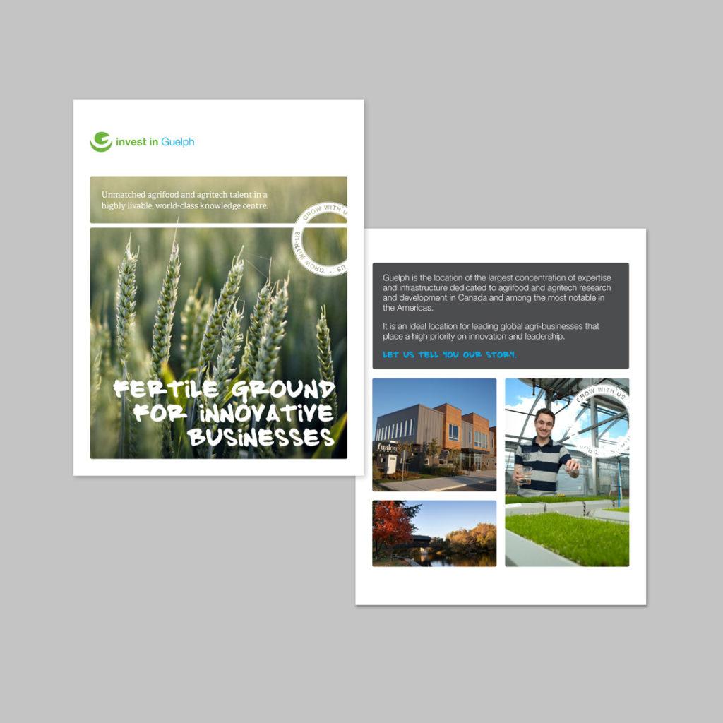 Guelph Economic Development Sector Profile Design