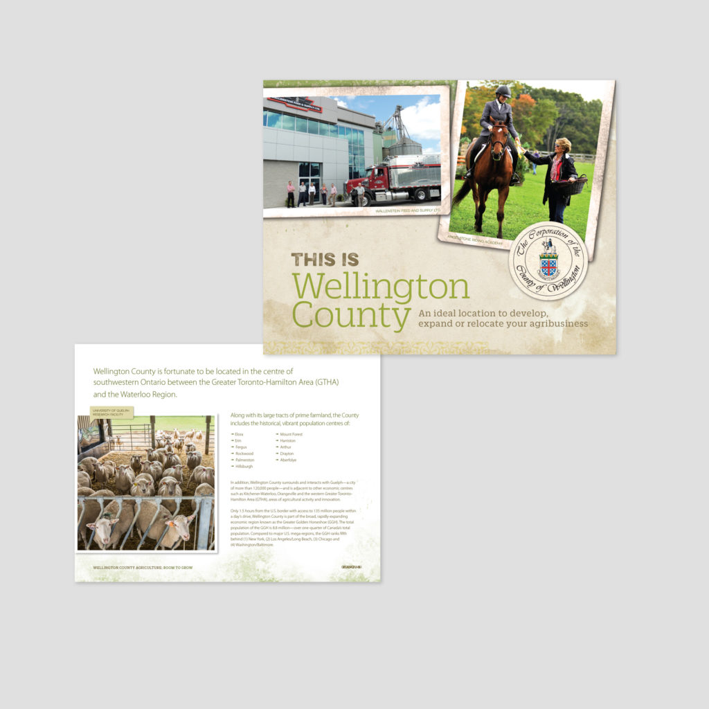 Cover of a Wellington County Sector Profile